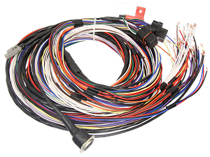 M84 BASIC HARNESS, 10' UNTERM